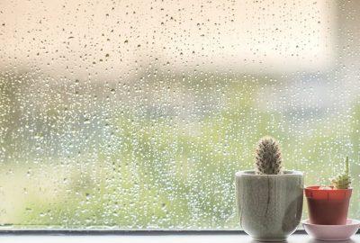 在雨中搬家:保持乾燥和保護自己的東西的10個技巧